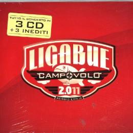LIGABUE - campovolo 2.011